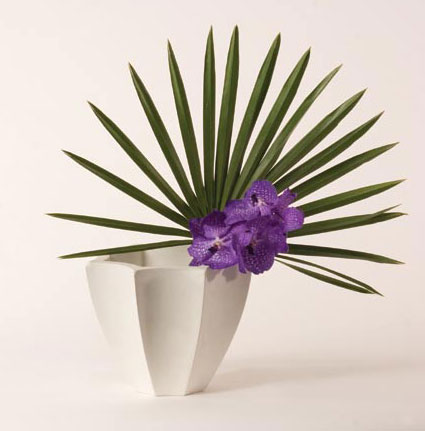 Fiori Planter - Roger Thomas Collection