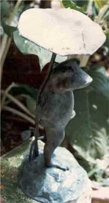 Frog Standing Under Leaf