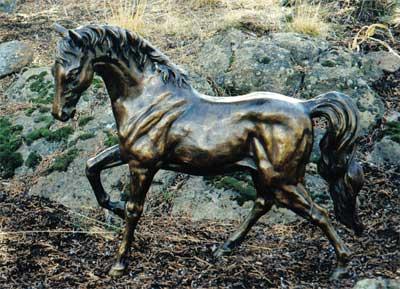 Horse - Prancing